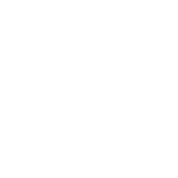 white filed international logo