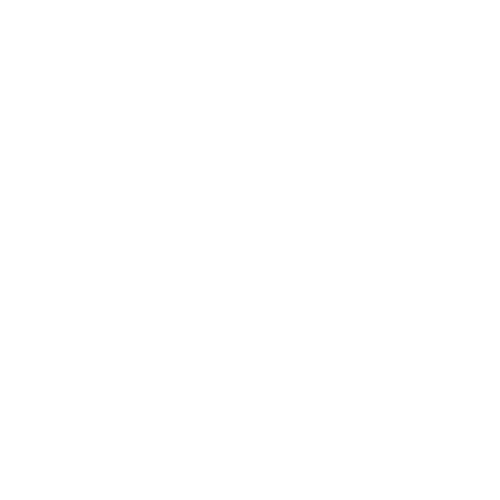 white Nannyworld logo